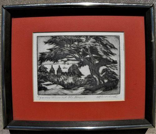 HARRIET GENE ROUDEBUSH (1908-1998) California etching coast cypress