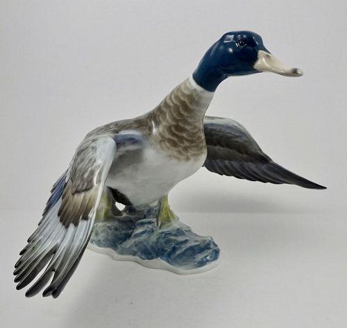 Impressive Rosenthal Porcelain Flying Mallard Duck