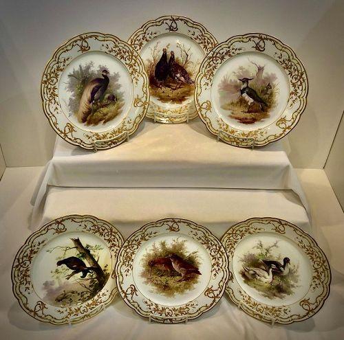 12 KPM Berlin Cabinet Plates, Birds