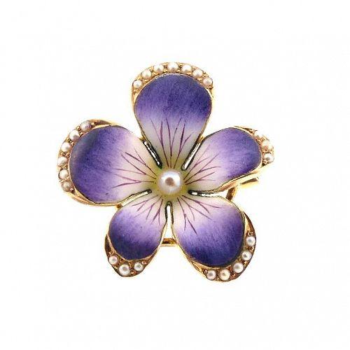 Art Nouveau Crane & Theurer 14K Gold Enamel Seed Pearl Violet Brooch