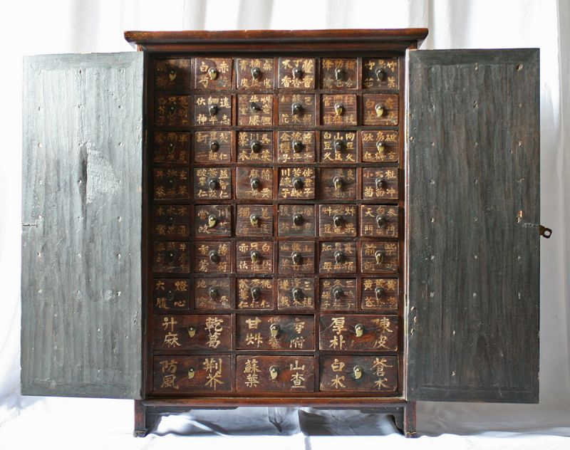 Rare, Museum Quality 19th Century Medicine Chest with Paulownia Doors