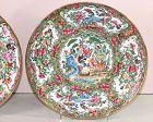 Pr. Chinese Famille Rose Medallion Export Porcelain Dinner Plates