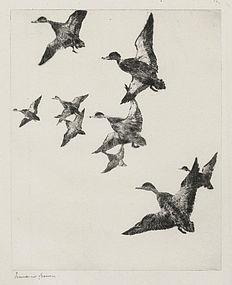 "Frank Benson, Etching, ""Black Ducks No. 2"" 1922"