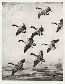 """Frank W Benson, etching, """"Hovering Geese"""" 1922"""