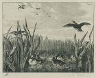 """Felix Bracquemond, etching, """"Sarcelles (Teals)"""""""