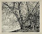 """Robert Hogg Nisbet, Etching, """"Through the Willows No 2"""""""