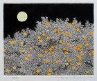 Japanese Ltd. Ed. Etching Aquatint Tanaka Ryohei Tree of Mandarin