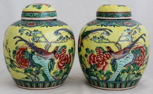 Pair Chinese Qing Famille Verte Lidded Porcelain Jars Yellow Birds