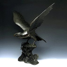 An Excellent bronze Sculpture of A Mantled Eagle