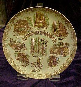 Vintage scenic souvenir plate of  California Redwoods
