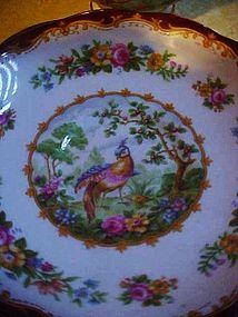 Royal Albert Chelsea Bird maroon  trim cup and saucer