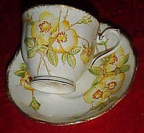 Royal Albert Wild rose bone china cup and saucer yellow