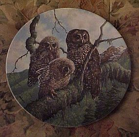 Knowles Woodland Watch Spotted Owls 4th plate