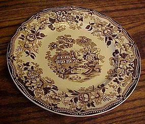 Royal Staffordshire Clarisse Cliff Tonquin brown plate