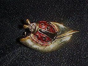 Lady bug on a leaf, pin