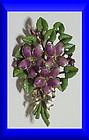 Exquisite Violet birthday brooch -March