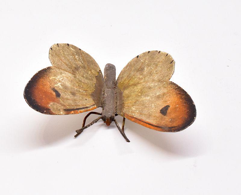 C1880 butterfly AUSTRIAN BRONZE