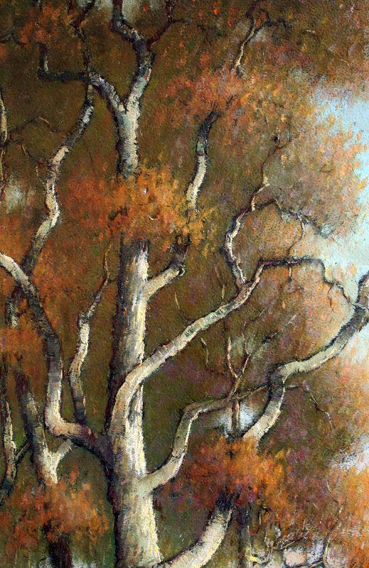 The National Arboretum, Washington D.C. by Benson Bond Moore