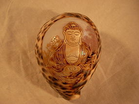 A Nice Old Chinese Buddha Seashell Carving