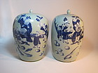 Pair of Mid 19th C. Chinese Blue and White Jars