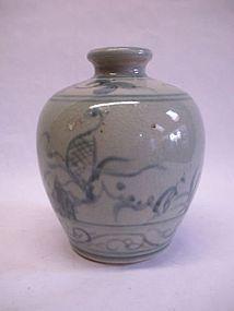 Chinese Qing Dynasty blue and white porcelain jar vase