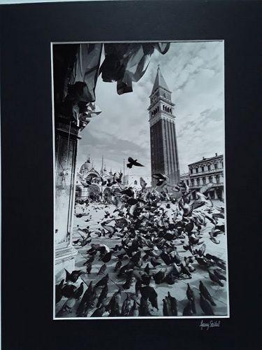 """Garry Seidel """"Venetian Flight"""" art Photograph Signed"""