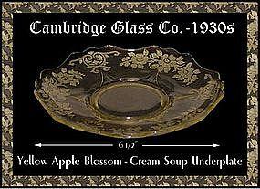 Cambridge Yellow Apple Blossom Cream Soup Underplate