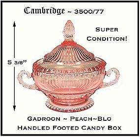 Cambridge~Peach~Blo Unusual Gadroon Ftd Covered Candy