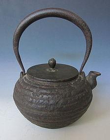 Japanese Antique Ryubundo Iron Tetsubin