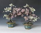 Pair of Stone Magnolia Plants with Cloissonne Pot