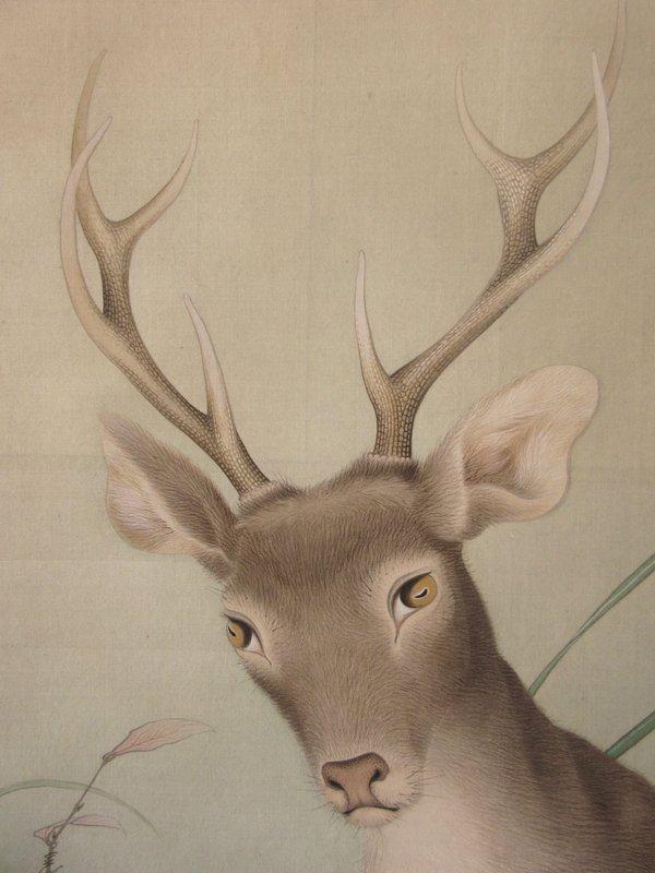Incredible Antique Japanese Large Scroll Painting of Deer