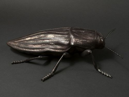 Japanese Contemporary Sculpture of a Beetle