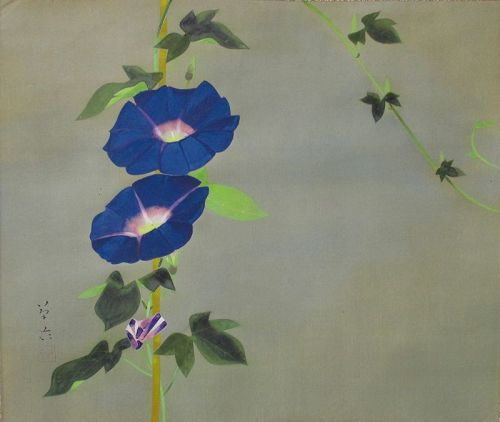 Japanese Antique Scroll Painting of Morning Glories by Kido Soi